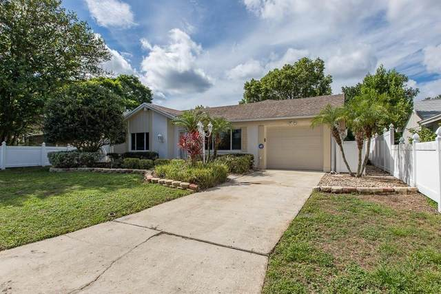 3502 Margate Drive, Holiday, FL 34691 (MLS #U8088629) :: Griffin Group