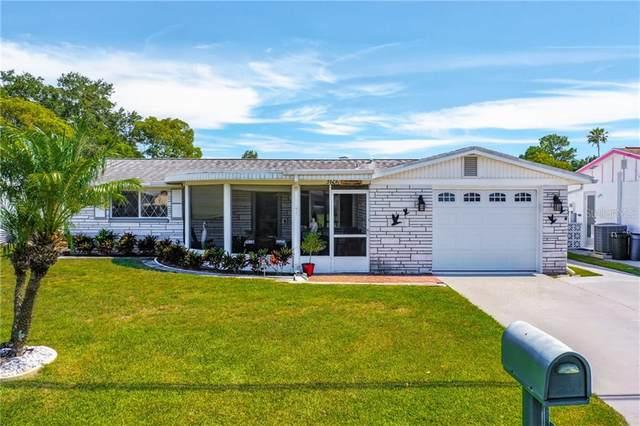 3606 Darlington Road, Holiday, FL 34691 (MLS #U8088716) :: Griffin Group