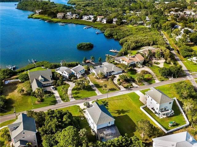 Oceanview Avenue, Palm Harbor, FL 34683 (MLS #U8088754) :: Your Florida House Team