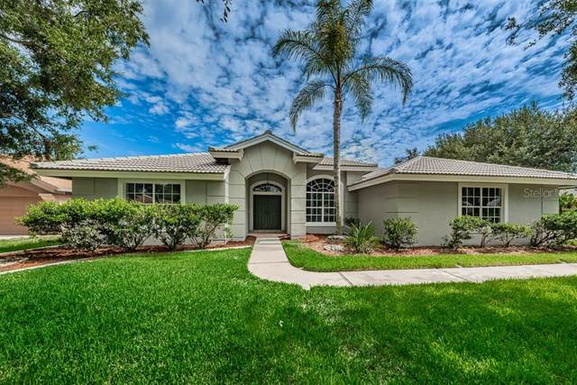 3538 Burntwood Court, Holiday, FL 34691 (MLS #U8088998) :: Cartwright Realty