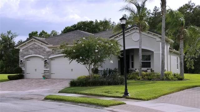 2443 Luna Crest Court, Wesley Chapel, FL 33543 (MLS #U8089005) :: Bridge Realty Group
