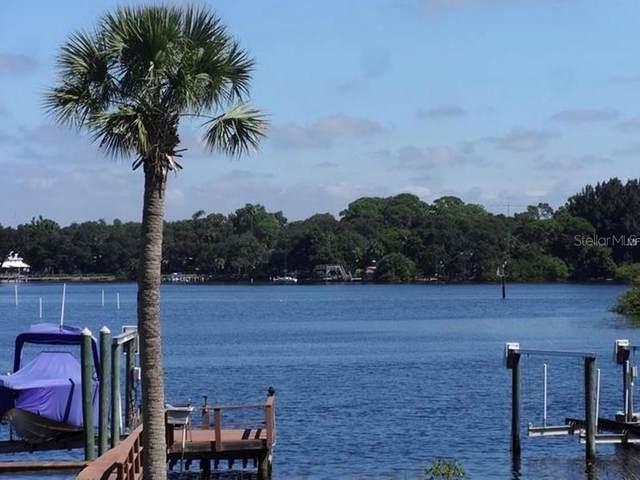 1434 Riverside Drive, Tarpon Springs, FL 34689 (MLS #U8089067) :: Premier Home Experts