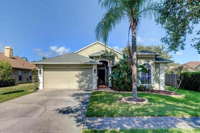 1314 Lake Shore Ranch Drive, Seffner, FL 33584 (MLS #U8089125) :: EXIT King Realty