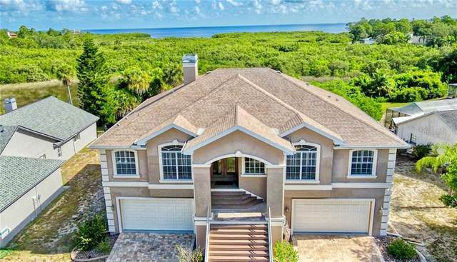 2401 Sand Bay Drive, Holiday, FL 34691 (MLS #U8089267) :: Griffin Group