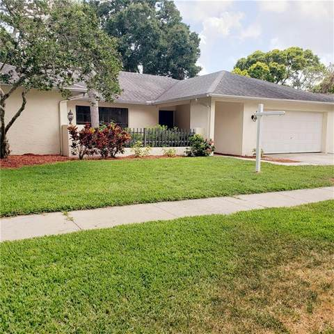 960 Chatham Way, Palm Harbor, FL 34683 (MLS #U8089315) :: Your Florida House Team
