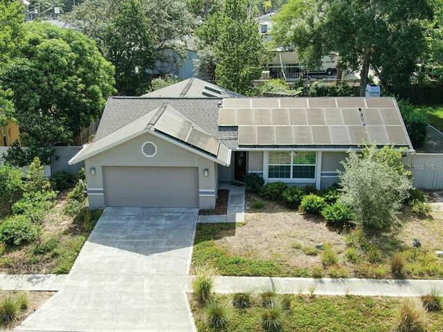 3925 Erne Street, Palm Harbor, FL 34683 (MLS #U8089335) :: Homepride Realty Services