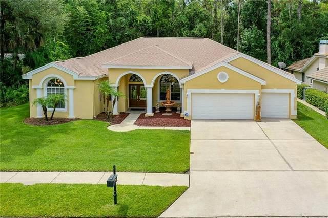 5252 Elk Drive, Oldsmar, FL 34677 (MLS #U8089362) :: Griffin Group