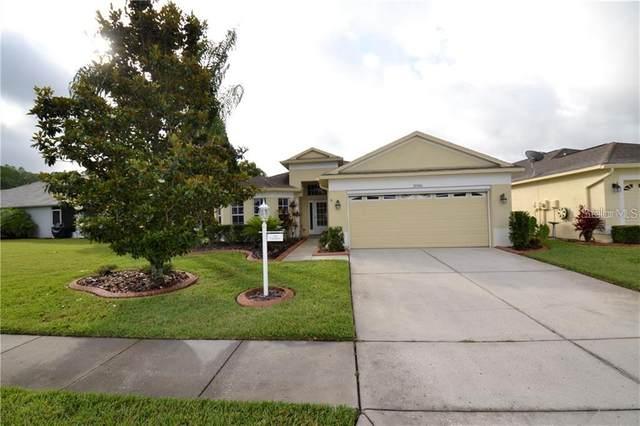 1046 Dustan Place, Trinity, FL 34655 (MLS #U8089431) :: Griffin Group