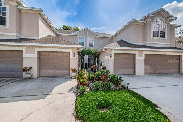 3645 Country Pointe Place, Palm Harbor, FL 34684 (MLS #U8089433) :: Team Bohannon Keller Williams, Tampa Properties