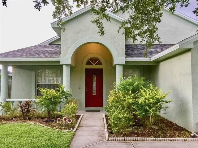381 Tavernier Circle, Oldsmar, FL 34677 (MLS #U8089482) :: Griffin Group