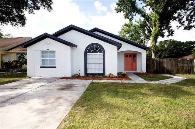 7915 George Washington Lane, Tampa, FL 33637 (MLS #U8089524) :: Griffin Group
