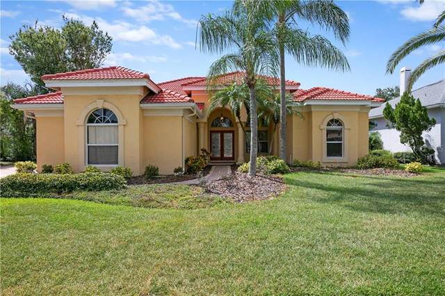10417 Cory Lake Drive, Tampa, FL 33647 (MLS #U8089591) :: Cartwright Realty