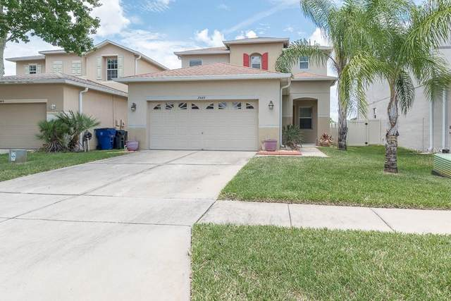 17449 Balmaha Drive, Land O Lakes, FL 34638 (MLS #U8089625) :: Pepine Realty