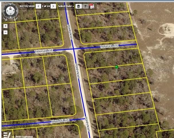 16392 Pomp Parkway, Weeki Wachee, FL 34614 (MLS #U8089712) :: Griffin Group