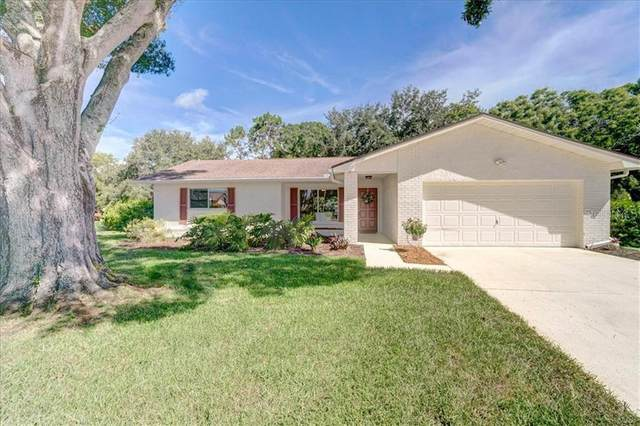 2852 Chalmers Court, Palm Harbor, FL 34684 (MLS #U8089845) :: Your Florida House Team