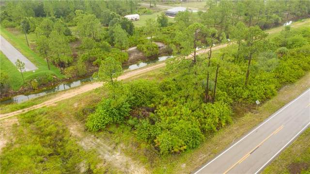 913 E 12TH Street, Lehigh Acres, FL 33972 (MLS #U8089863) :: Bustamante Real Estate