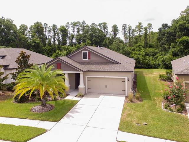 8501 May Port Court, Land O Lakes, FL 34638 (MLS #U8089930) :: Rabell Realty Group