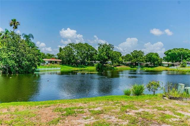 2070 Forest Drive, Clearwater, FL 33763 (MLS #U8090001) :: Keller Williams Realty Peace River Partners