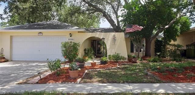 2609 Ridge Lane, Palm Harbor, FL 34684 (MLS #U8090027) :: Medway Realty