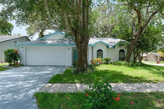 2596 Gulfbreeze Circle, Palm Harbor, FL 34683 (MLS #U8090101) :: Pristine Properties