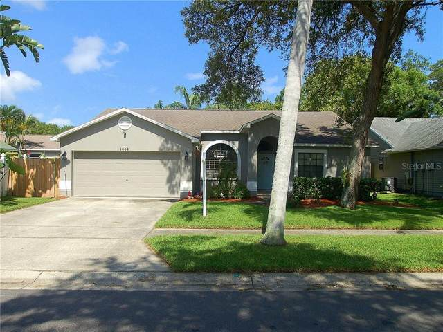 1663 Autumnwood Street, Tarpon Springs, FL 34689 (MLS #U8090105) :: GO Realty