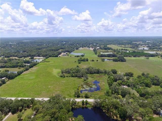 18818 Livingston Avenue, Lutz, FL 33549 (MLS #U8090135) :: Carmena and Associates Realty Group