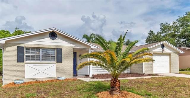 907 Gainesway Dr, Tarpon Springs, FL 34689 (MLS #U8090156) :: Griffin Group