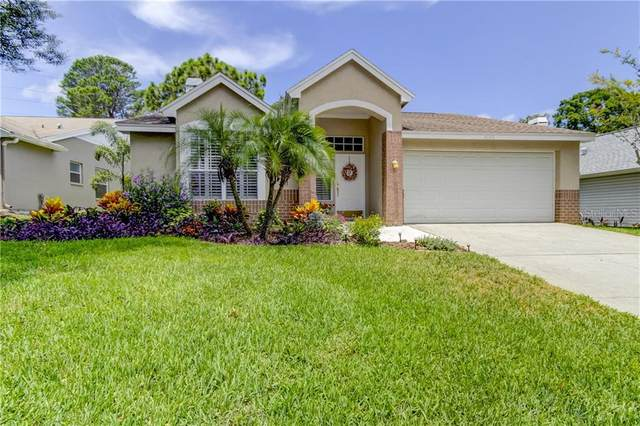 4120 Seton Circle, Palm Harbor, FL 34683 (MLS #U8090213) :: Burwell Real Estate