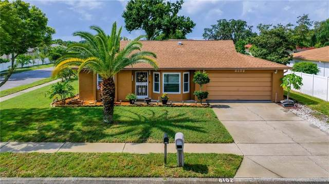 8102 Royal Hart Drive, New Port Richey, FL 34653 (MLS #U8090234) :: Mark and Joni Coulter | Better Homes and Gardens
