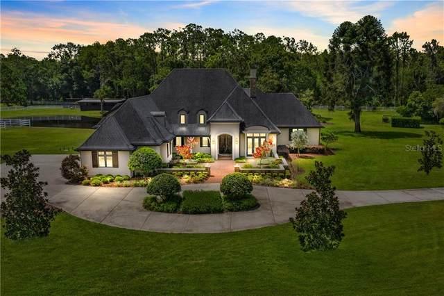 1251 Ranch Road, Tarpon Springs, FL 34688 (MLS #U8090237) :: Premium Properties Real Estate Services