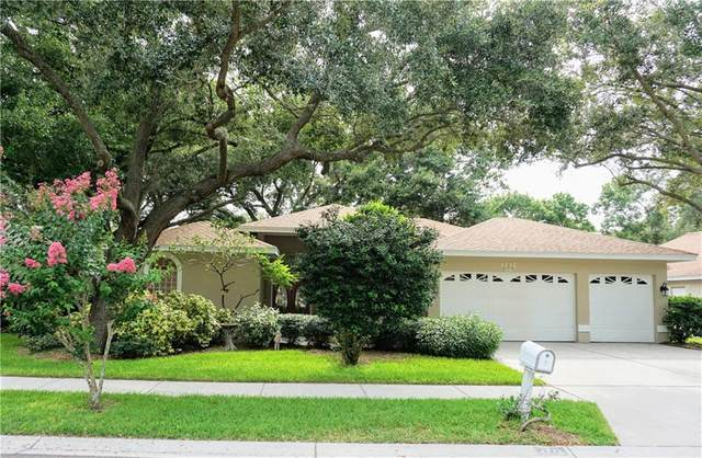 1711 Country Trails Drive, Safety Harbor, FL 34695 (MLS #U8090238) :: Bridge Realty Group