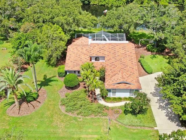 180 Garland Circle, Palm Harbor, FL 34683 (MLS #U8090243) :: Pristine Properties