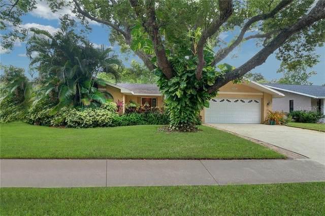 2637 Burntfork Drive, Clearwater, FL 33761 (MLS #U8090250) :: Bridge Realty Group