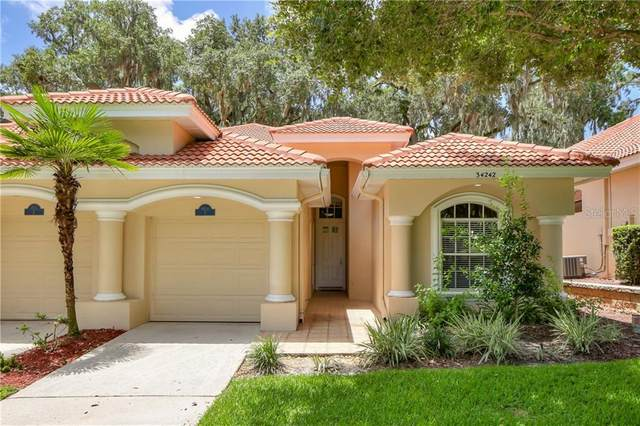 34242 Perfect Drive, Dade City, FL 33525 (MLS #U8090288) :: Rabell Realty Group
