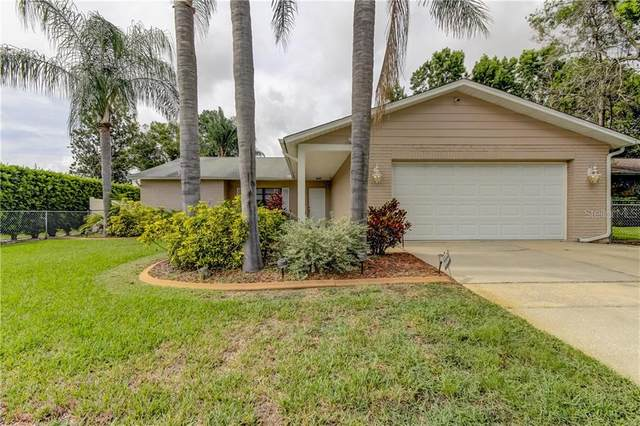 8209 Tahr Avenue, New Port Richey, FL 34653 (MLS #U8090328) :: Mark and Joni Coulter | Better Homes and Gardens
