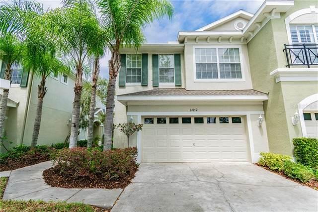 14052 Waterville Circle, Tampa, FL 33626 (MLS #U8090351) :: Team Pepka
