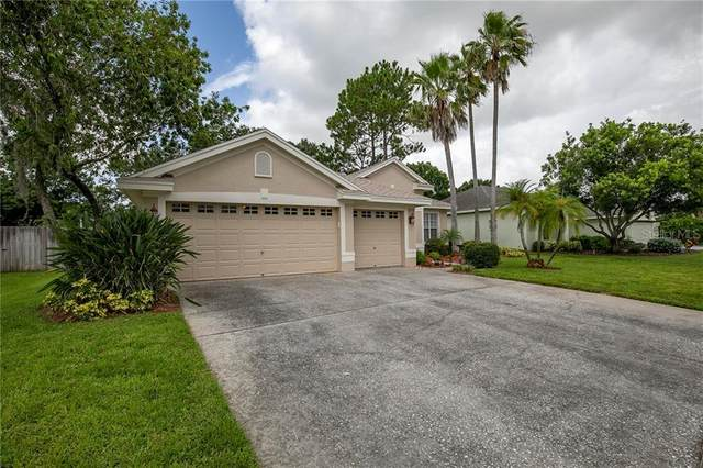 590 Equine Drive, Tarpon Springs, FL 34688 (MLS #U8090363) :: GO Realty