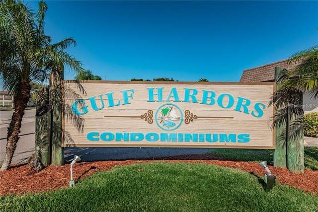 4743 Jasper Drive #206, New Port Richey, FL 34652 (MLS #U8090410) :: Alpha Equity Team