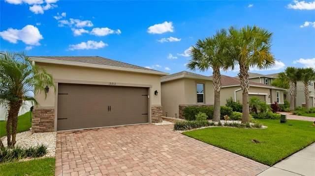 12212 Lake Boulevard, Trinity, FL 34655 (MLS #U8090440) :: Heart & Home Group