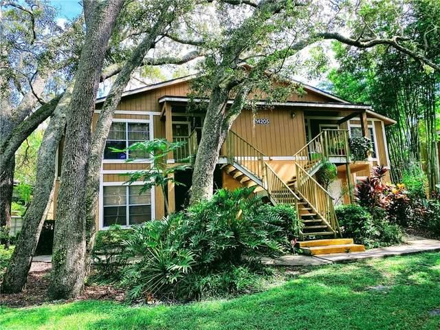14205 Shadow Moss Lane #202, Tampa, FL 33613 (MLS #U8090484) :: Baird Realty Group