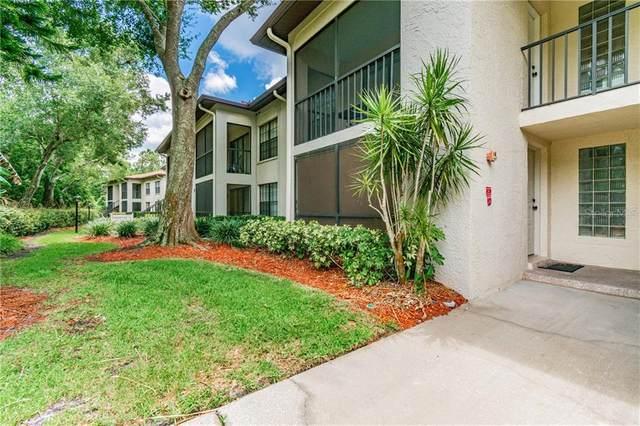 3389 Crystal Court E G, Palm Harbor, FL 34685 (MLS #U8090487) :: GO Realty