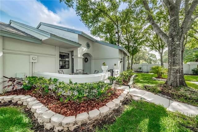 3899 Tanager Place, Palm Harbor, FL 34685 (MLS #U8090585) :: Team Bohannon Keller Williams, Tampa Properties