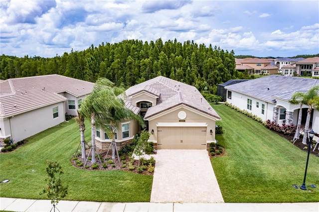 30639 Chesapeake Bay Drive, Wesley Chapel, FL 33543 (MLS #U8090628) :: Pepine Realty