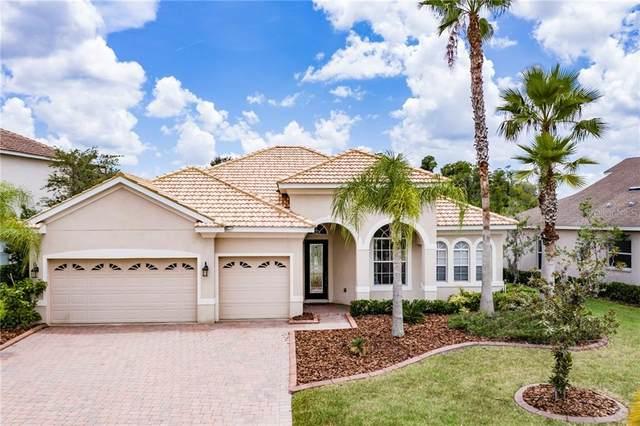 10513 Martinique Isle Dr, Tampa, FL 33647 (MLS #U8090663) :: Florida Real Estate Sellers at Keller Williams Realty