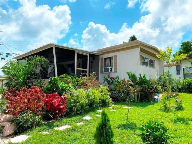 826 Frances Drive, Tarpon Springs, FL 34689 (MLS #U8090704) :: Heart & Home Group