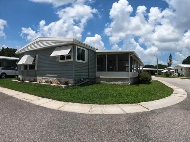 374 Dolphin Drive N, Oldsmar, FL 34677 (MLS #U8090820) :: Team Borham at Keller Williams Realty