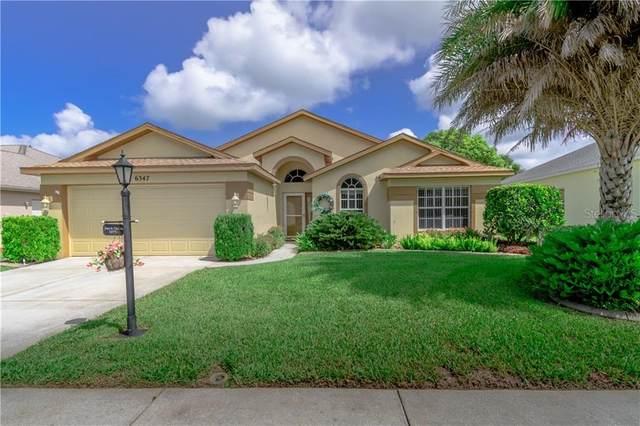 6347 Clark Lake Drive, New Port Richey, FL 34655 (MLS #U8090822) :: Team Borham at Keller Williams Realty