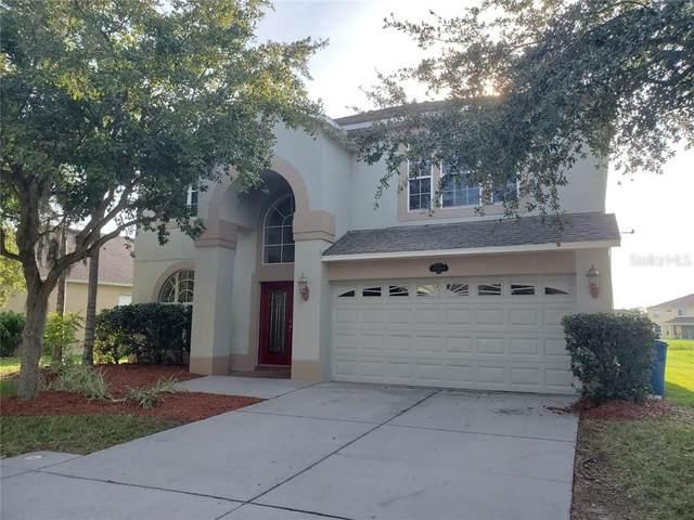 10919 Ancient Futures Drive, Tampa, FL 33647 (MLS #U8090831) :: EXIT King Realty