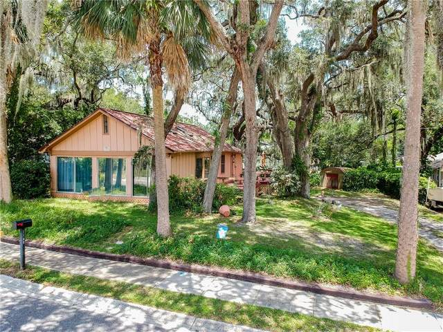 1105 3RD Street N, Safety Harbor, FL 34695 (MLS #U8090896) :: Delta Realty Int