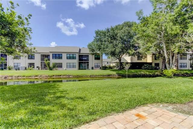 2467 Kingfisher Lane H102, Clearwater, FL 33762 (MLS #U8090975) :: Alpha Equity Team